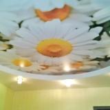 Потолки с художественной фотопечатью